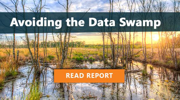 Avoiding the Data Swamp: Read Report