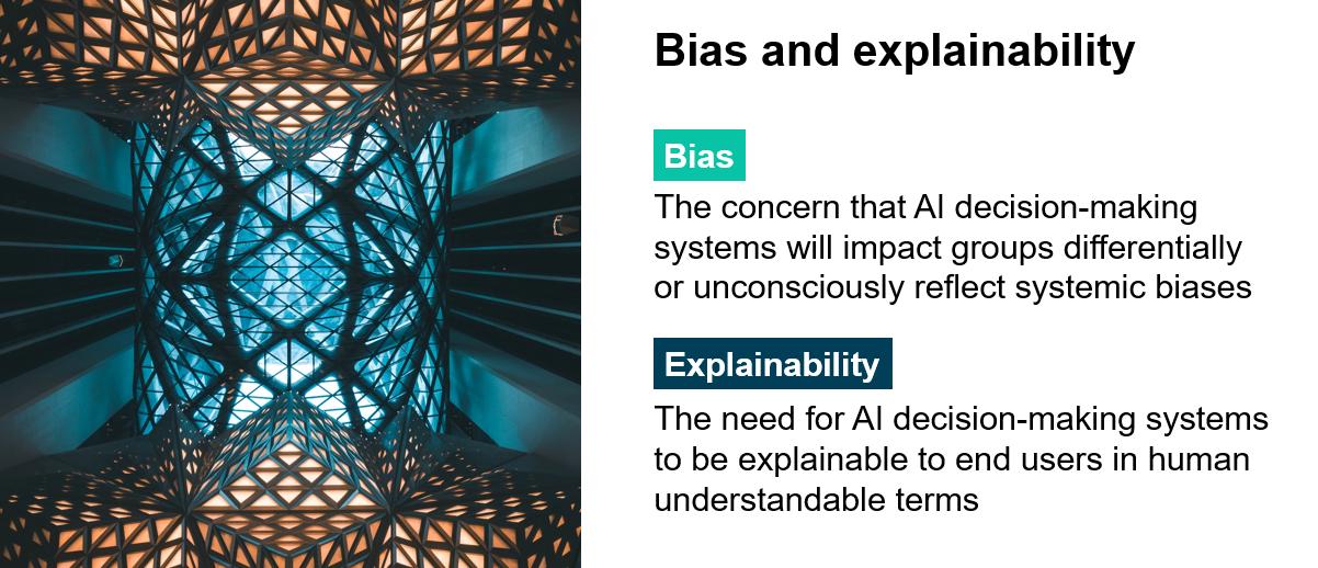 Bias and explainability